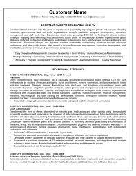 Relevant Experience Resume Template Onwebioinnovateco