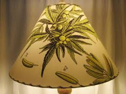 Coolie Lamp Shade Kit by 38 Best Botanical Lampshades Images On Pinterest Lampshades