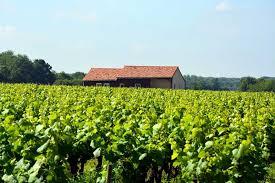 chambre d agriculture nantes chambre d hôtes chez vigneron vignoble de nantes latucauderie