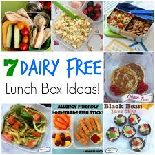 7 Dairy Free School Lunch Ideas