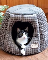 Armarkat Cat Bed by 84 Best Best Cat Beds Images On Pinterest Cat Beds Cat