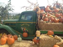 Cal Poly Pomona Pumpkin Patch Promo Code by Shoes Dogs And Chocolate Cal Poly Pomona Pumpkin Festival