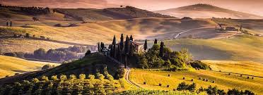 Tuscany Vineyard Wallpapers High Quality Resolution Edited