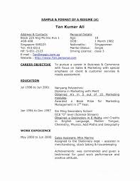 Resume Cv Sample Singapore Format New Writing Templates Medium Size