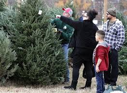 Christmas Tree Shop Deptford Nj Number by Texas Christmas Tree Farms Christmas Tree Shops Michigan Tag 85