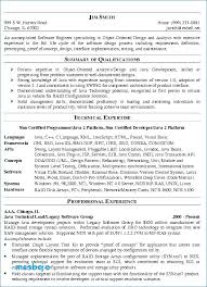 Professional Summary Resume Examples For Software Developer Sample
