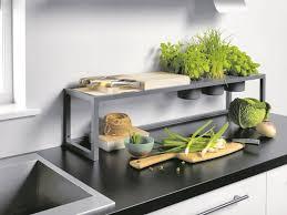 die pflanzen und kräuter siedeln in die küche immo sn at