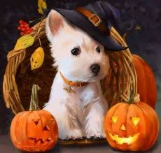 Libbys Pure Pumpkin For Dogs by Its All Good Dogs And Puppies Pinterest