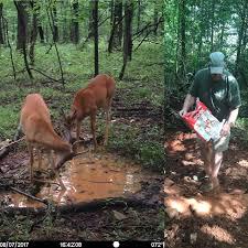 Deer Antler Shed Trap by Bigdeer Big Deer Page 6