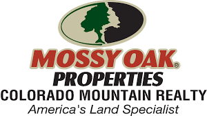 Colorado Blm Christmas Tree Permits by Colorado Land Bordering Government Land For Sale