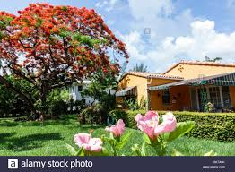 Florida Miami Beach Single-family Home House Exterior Garden ... Family House Home Garden Flat Stock Vector 461836402 The Right Design Of And You Need To Concern Happy Having Fun In Photo Picture And Making Barbecue At Image 64860221 Fig Tree Home With Garden Large Terrace Just Florida Miami Beach Singlefamily House Exterior Hollyhock 4 Bedroom With Room Entrancing Gardens Best Detached Usa Front Single American Family Featured In Remodel Magazine A Better Homes Special Lovely Berlin Looking For Autumn 2017 Htausch Floor Plan Friday Inoutdoor Room