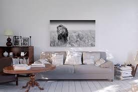 lionhearted flair im wohnzimmer wer hätte auch gern ein