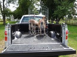 Instant Animal Cage For Transport Used Commercials Sell Used Trucks Vans For Sale Commercial Daf Cf Livestock Truck The Farming Forum Custom Truckbeds Specialized Businses And Transportation Alinum Box Ludens Inc 3 Deck Containers Plowman Brothers Transport Trailer Zsan Tarm Makinalar Pickup Sideboardsstake Sides Ford Super Duty 4 Steps With Skirted Flat Bed W Toolboxes Load Trail Trailers For Farmstock October 2010 Home Growed Dray V 10 Fs17 Mods