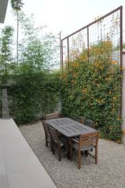 Yard Privacy Ideas Best 25 Backyard Privacy Ideas Pinterest