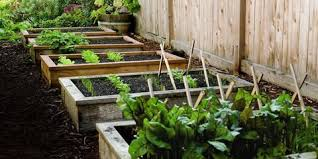 How to Build Raised Garden Bed