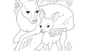 Wild Animals Coloring Pages Printable For Kids Download By