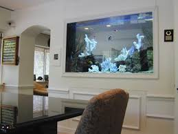 Home Aquarium Designs Aquarium Fish Tanks For Home Fish Tanks And ... Fish Tank Designs Pictures For Modern Home Decor Decoration Transform The Way Your Looks Using A Tank Stunning For Images Amazing House Living Room Fish On Budget Contemporary In Contemporary Tanks Nuraniorg Office Design Sale How To Aquarium In Photo Design Aquarium Pinterest Living Room Inspiring Paint Color New At Astonishing Simple Best Beautiful Coral Ideas Interior Stylish Ding Table Luxury