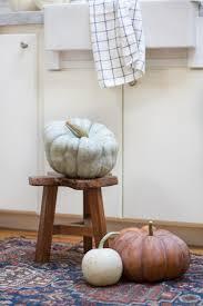 Varieties Of Pie Pumpkins by Pumpkin Varieties And Their Many Uses Zevy Joy