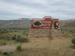 Agate Fossil Beds National Monument by Fossil Butte National Monument Utah U0027s Adventure Family