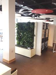 Flooring Materials For Office by Indoor Plants For Offices Urban Planters