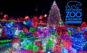 Fred Meyer Christmas Trees by Zoolights Tickets Now On Sale At Fred Meyer Opens Black Friday