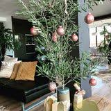 o tannenbaum die skurrilsten weihnachtsbäume der