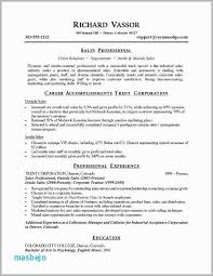 Resume For Sales Manager New Inside Examples Free Download