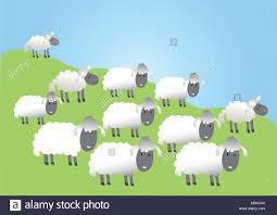 Apprendre à Dessiner Un Mouton En 3 étapes