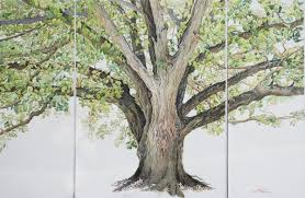Arkansas Champion Trees An Artist s Journey