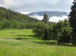 Usda Christmas Tree Permits Colorado by Elk Tooth Ranch For Sale Pueblo County In Rye Colorado