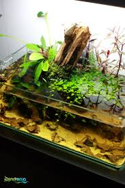 Star Wars Fish Tank Decorations by 653 Best Tanks Images On Pinterest Aquarium Ideas Aquarium
