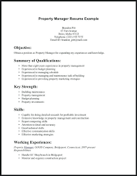 Good Summary Of Qualifications For Resume Examples Skills To Put On