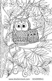 Coloring Book For Adult And Older Children Page With Lovely Mother Owl Her