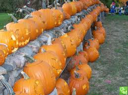 Pumpkin Farms In West Michigan by Stonewall Pumpkin Festival Rochester Hills 2017 Oakland County Moms