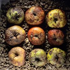 Smashing Pumpkins Rotten Apples Tab by Image Gallery Rotten Apples