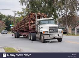 Pine Tree Logs Being Moved By Logging Trucks Stock Photo: 123598446 ... Orange Tree Wooden First Trucks Pack Of 3 At John Lewis Partners Stock Photos Images Alamy Convoy Utility And Removal On The Way North I95 Davey Removal October 13th 2013 Toronto On Youtube Pine Tree Logs Being Moved By Logging Trucks Photo 123598464 Wright Service Reaps Rewards From Long Forestry Bucket Affordable How To Ensure Efficient Vocational Truck Specifications Equipment For Sale A Better Arborist American Historical Society