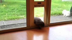 Petsafe Freedom Patio Panel Pet Door 96 by Easy To Use Patio Pet Door By Modern Pet Doors Youtube