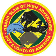 Cub Scout Committee Chair Patch Placement by Cub Scout And Boy Scout Awards