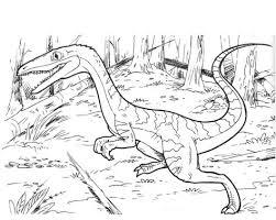 Dinosaur Coelophysis Bauri Coloring Page