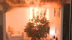 How Fast Can A Christmas Tree Burn