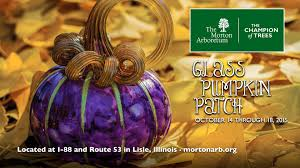 Pumpkin Patch Near Lincoln Il by 348 Best Glass Pumpkins Images On Pinterest Glass Pumpkins Hand