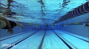 Olympic Swimming Pool Montreal Training