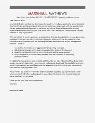 Cover Letter Executive Director Sample For It Position Accounting