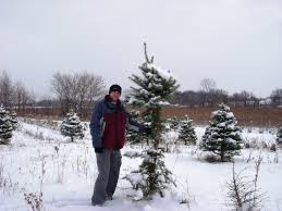 Miller Christmas Tree Farm Ct by Through Handlens And Binoculars 2010