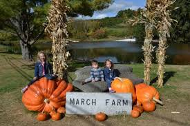 Pumpkin Picking In Ct by Fall Fun At March Farm In Bethlehem Ct Ct Mommy Blog