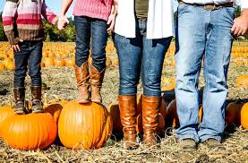 Swan Farms Snohomish Pumpkin Patch by Favorite Pumpkin Patches Of The Northwest U2013 Northwest Healthy Mama