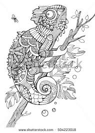 Chameleon Coloring Book For Adults Vector Illustration Anti Stress Adult Tattoo