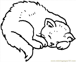 Coloring Pages Cat Mammals Cats Free Printable