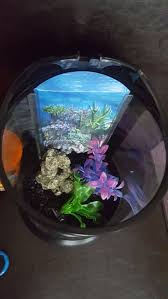 Spongebob Aquarium Decor Amazon by Más De 25 Ideas Increíbles Sobre Fish Tank Supplies En Pinterest
