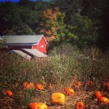 Pumpkin Picking Nj 2015 by Hacklebarney Farms Cider Mill 70 Photos U0026 47 Reviews Fruits